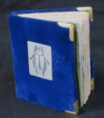 beetle-dream-book-150-12-sm-1-img_3702
